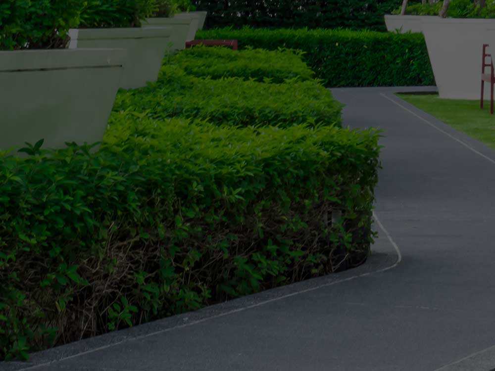 Collierville Commercial Landscaping
