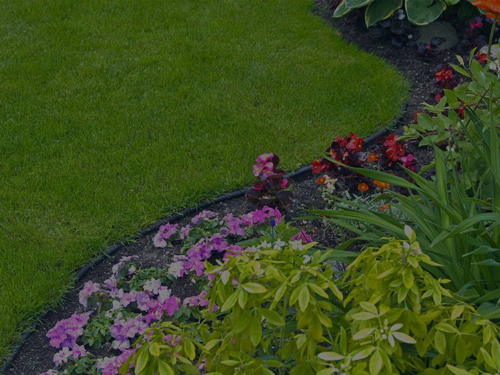 Collierville Garden Design
