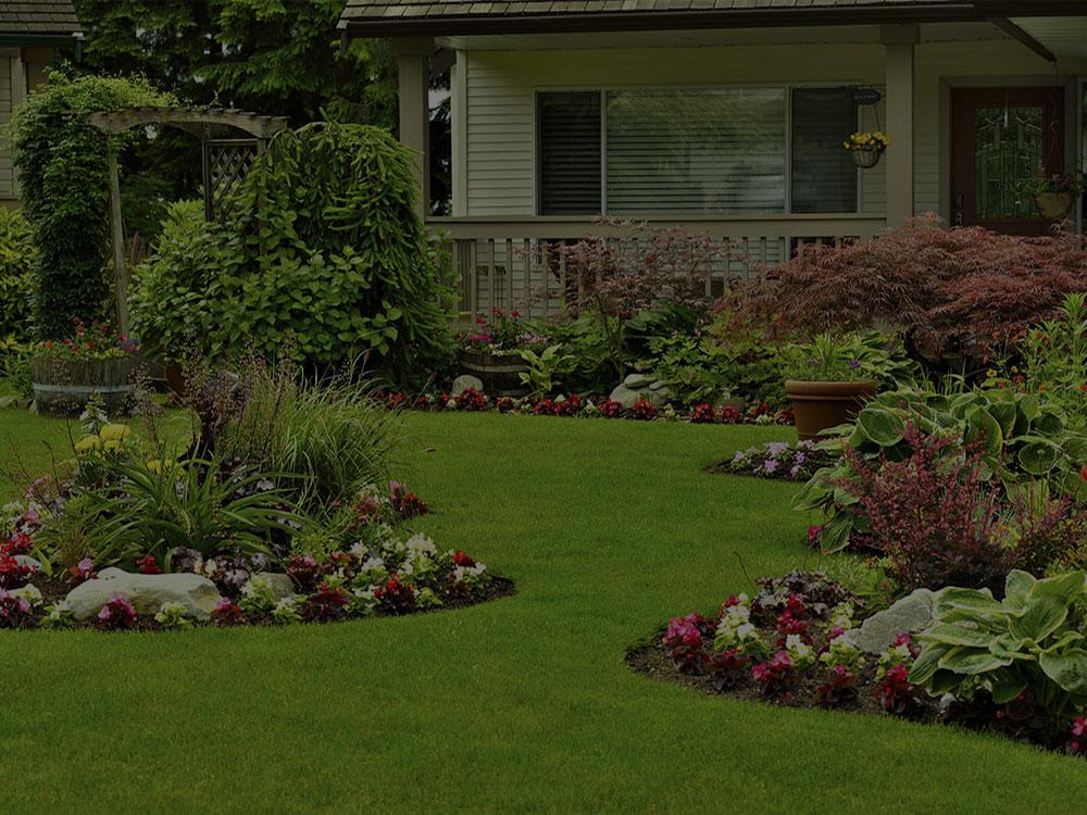 Collierville Landscape Design