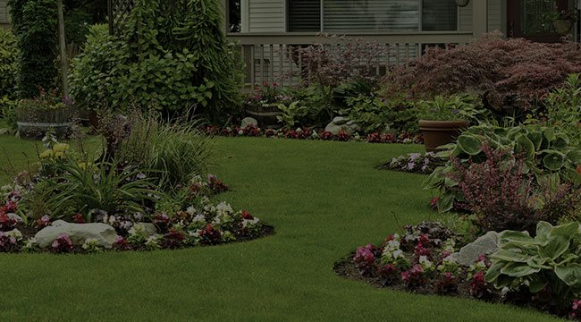 Germantown  Landscape Design